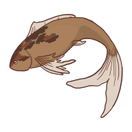 Patchyfish