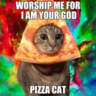 36PizzaCats