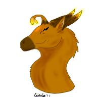 Fireflye